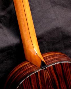 cat-c-4-Guitar-Luthier-LuthierDB-Image-8