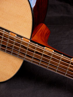 cat-fb-detail-Guitar-Luthier-LuthierDB-Image-5