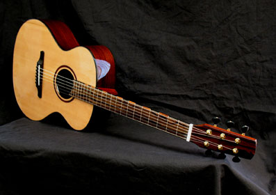 cat-p-horz-angle-Guitar-Luthier-LuthierDB-Image-1